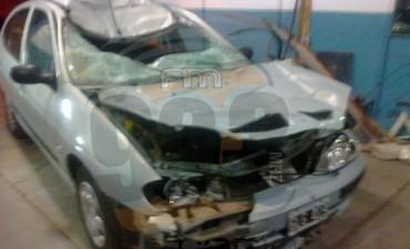 Desgracia con suerte: Los pasajeros de un Renault Megane resultaron ilesos tras chocar un caballo en la Ruta 65