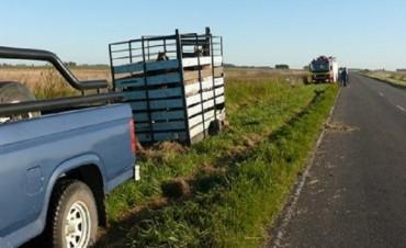Alvear: Un camión de una firma bolivarense protagonizó un accidente en ruta 205