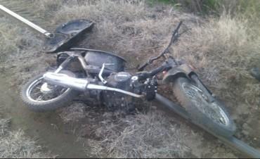 Dos motos secuestradas y una infracción por animales sueltos en el informe de prensa del CPR