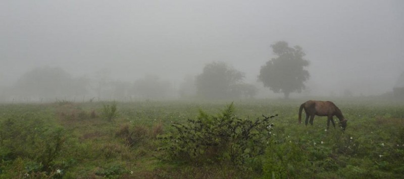 Lluvias en Bolívar y zona rural: Se dieron registros que van desde 7 hasta 29 milímetros