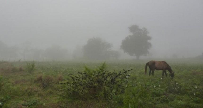 Registro de lluvias desde 5 a 30 milímetros en el partido de Bolívar