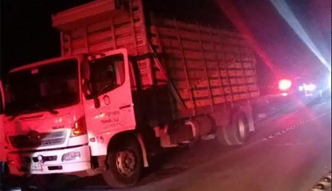 Saladillo: Robaron un camión cargado de pollos y lo abandonaron sobre ruta 205