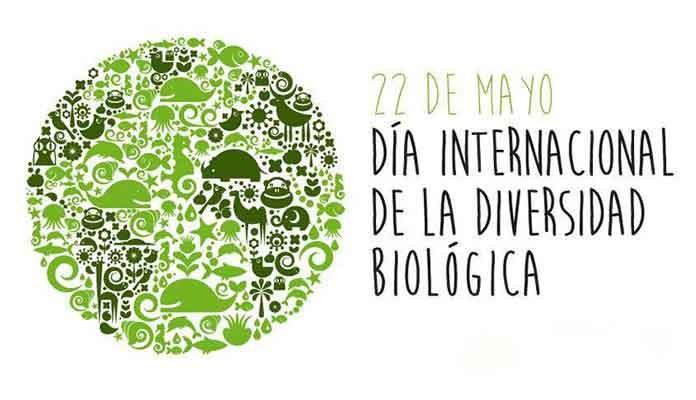 22 de Mayo; Día Internacional de la Diversidad Biológica
