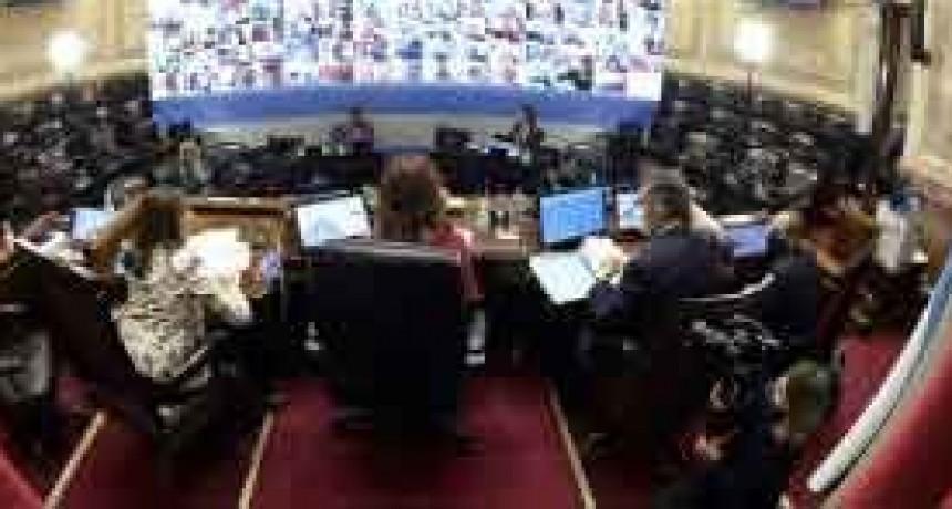 El Senado sesiona hoy para sancionar leyes vinculadas con la pandemia