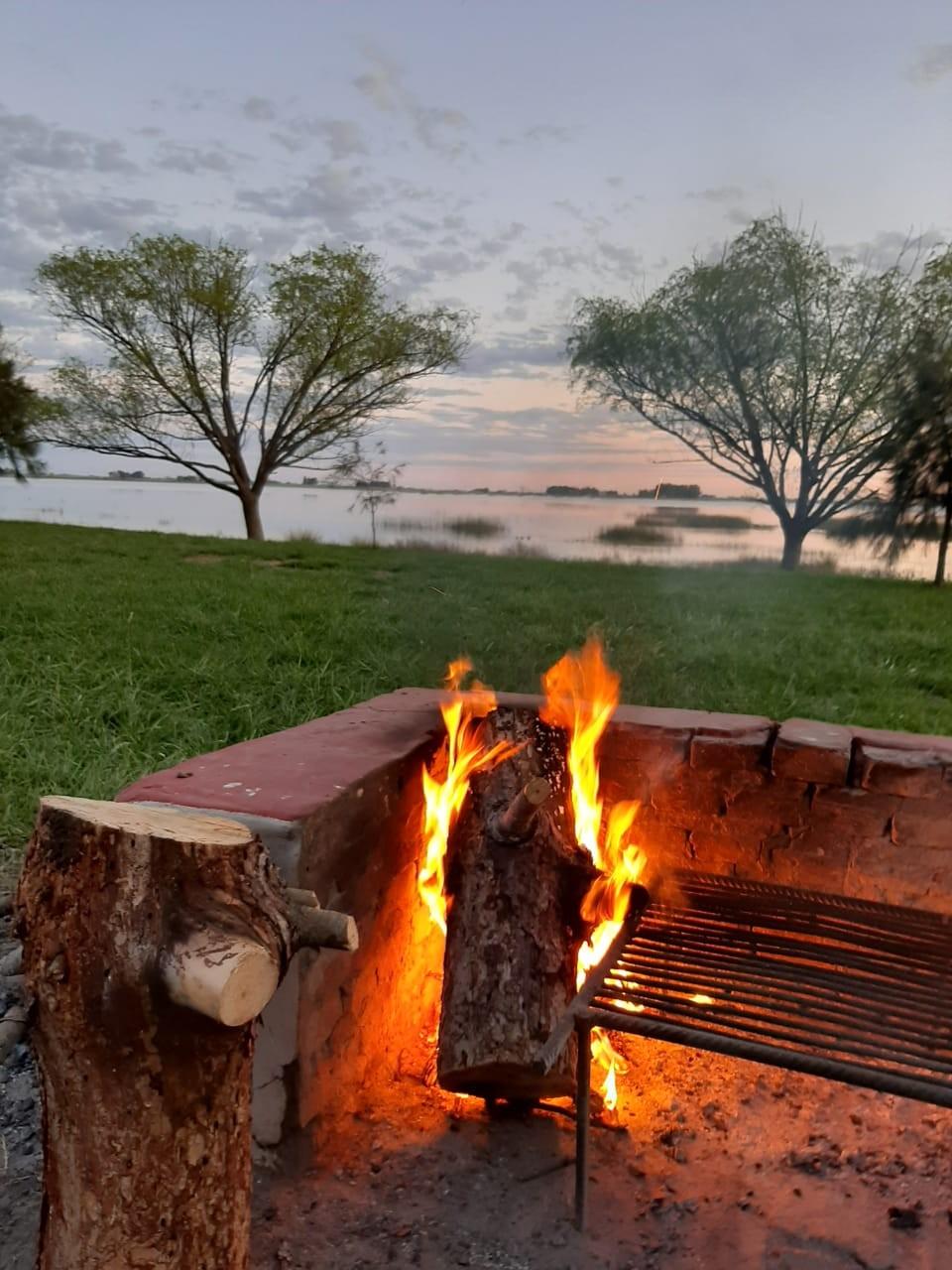 """Héctor Andrés Ahumada: """"A partir de alguien que dañó un árbol de la laguna encendiendo fuego en él, la agrupación Amigos de la Laguna inició una campaña de plantación espontánea de árboles en nuestro predio, algo que nos pareció perfecto"""""""