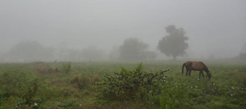 Registro de lluvias: Hasta de 5 a 31 milímetros acumulados parciales, en el partido de Bolívar