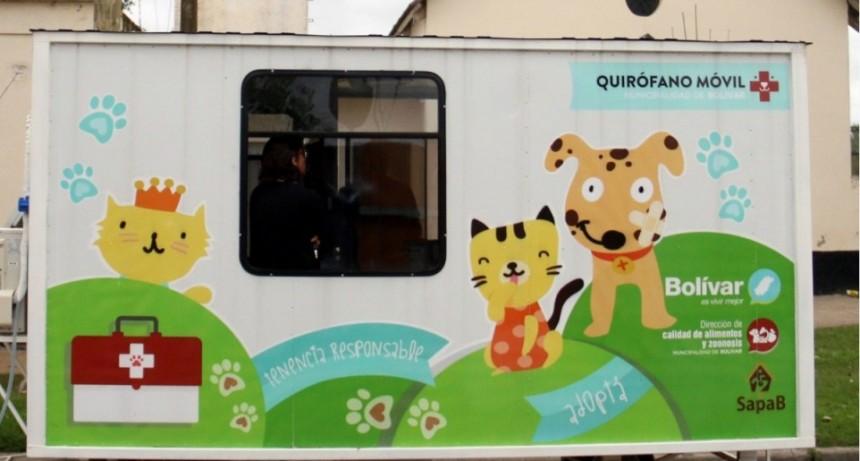 El quirófano móvil continua con las castraciones gratuitas en Barrio Anteo Gasparri