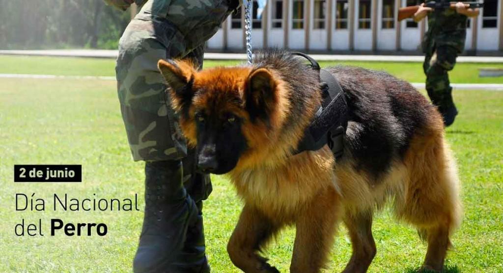 Día del perro en Argentina