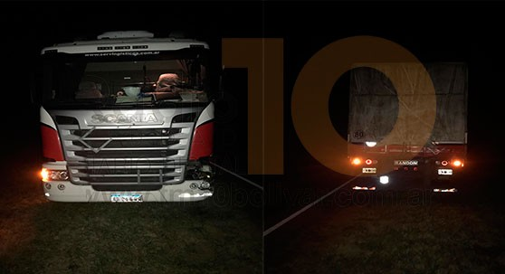 Un camión impacto con animales vacunos en Ruta 226, en inmediaciones a Herrera Vegas
