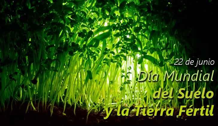 Día mundial del suelo y tierra fértil