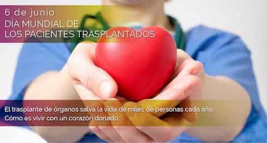 Día Mundial de los Pacientes Trasplantados