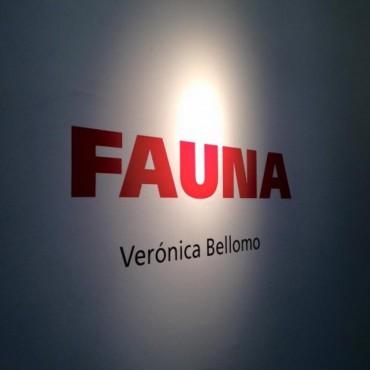 Veronica Bellomo presentó este sábado su muestra de fotografías 'Fauna'