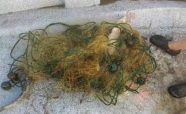Trenque Lauquen: Secuestro por pesca clandestina