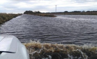 INUNDACIÓN REGIONAL: La Provincia declaró en emergencia hídrica al distrito de Guaminí