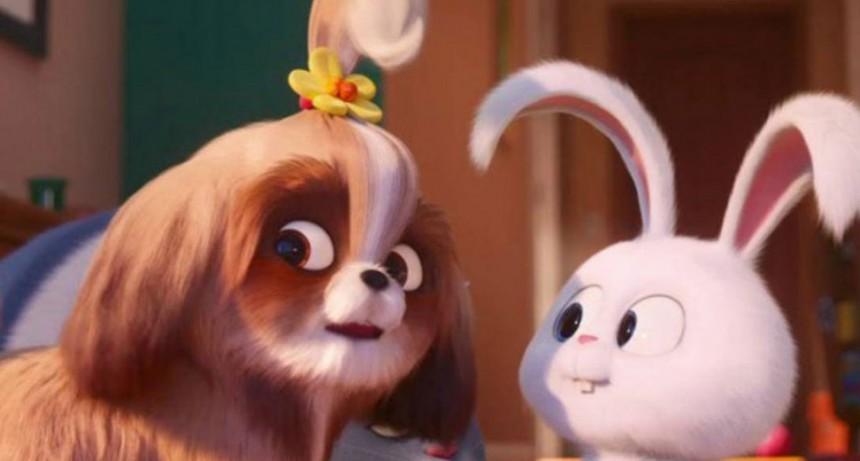 El Cine Avenida y una semana dedicada a conocer 'La vida secreta de tus mascotas 2'