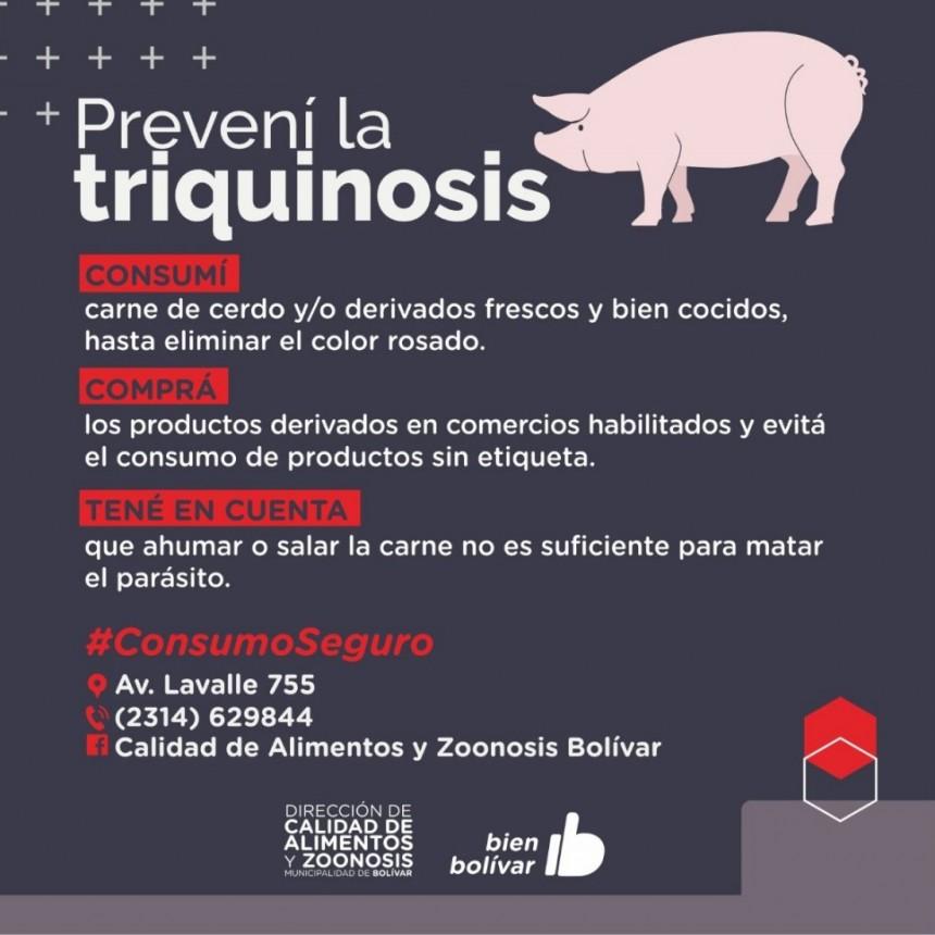 La Dirección de Zoonosis y Calidad de Alimentos dio recomendaciones para la prevención de la triquinosis