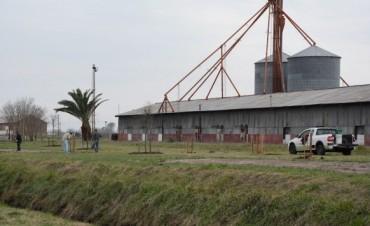 La comunidad japonesa en Argentina donó árboles para LA Parquización del Ferrocarril