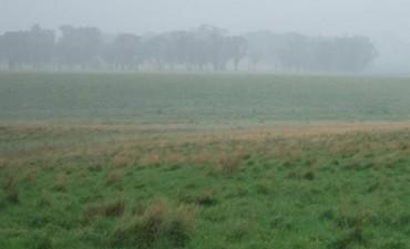 Hacia el fin de semana vuelven las lluvias al centro del país