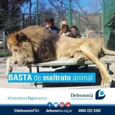 La Defensoría reclamó que se inhabilite el zoológico de Luján, por maltrato animal