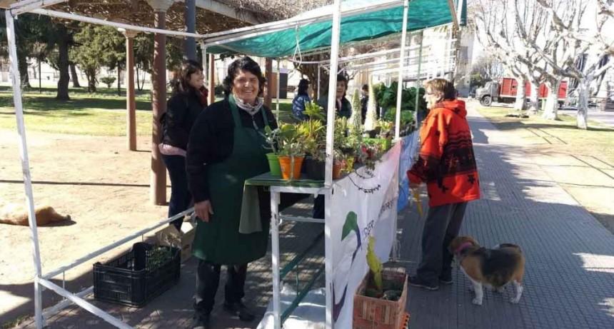 Un sábado más de Feria Verde en el centro de la ciudad