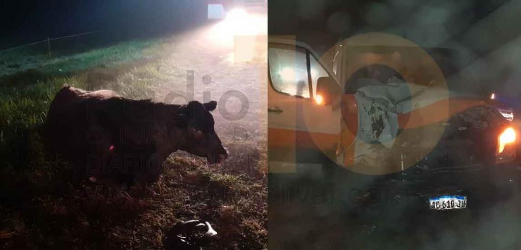 Un utilitario impactó con un vacuno en Ruta 205