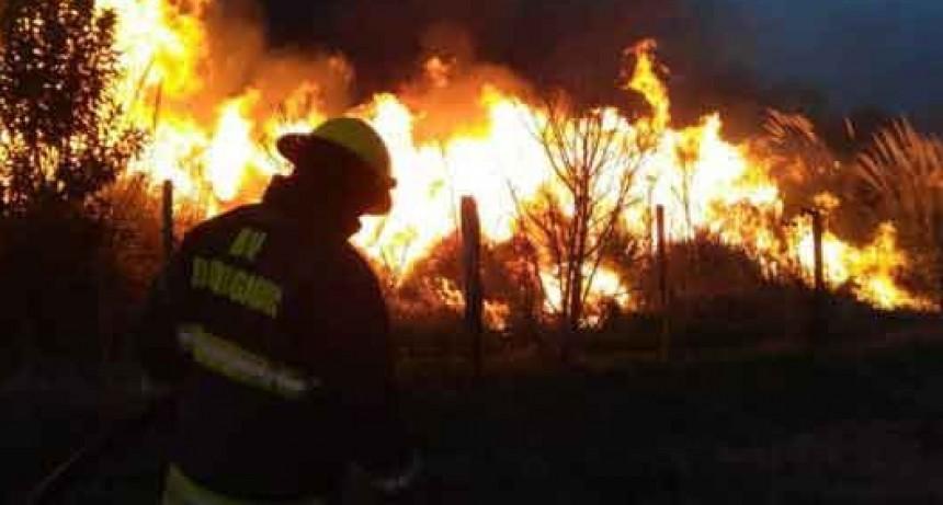 Dudignac; Mas de 5 hs. de trabajo le demando a Bomberos de esa localidad controlar un voraz incendio rural que llego a tener 3 metros de altura
