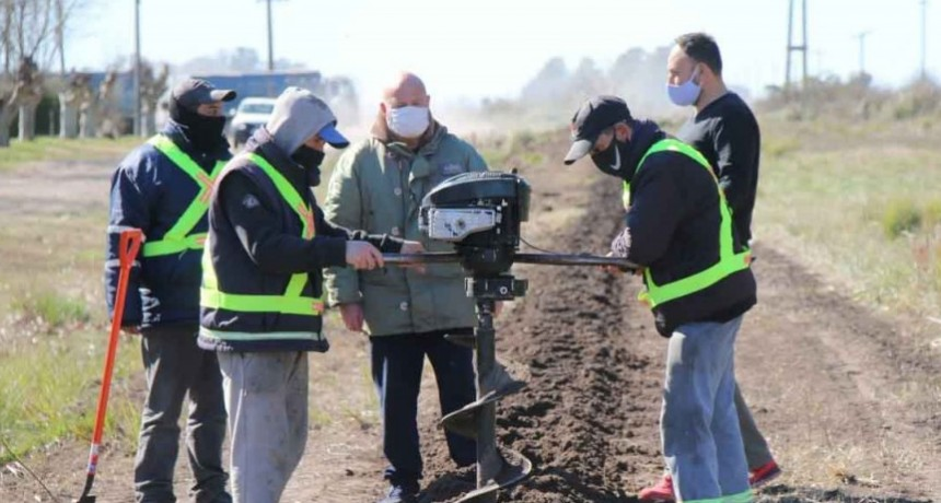 La Dirección de Paisajes comenzó una plantación de 700 árboles en Ibarra