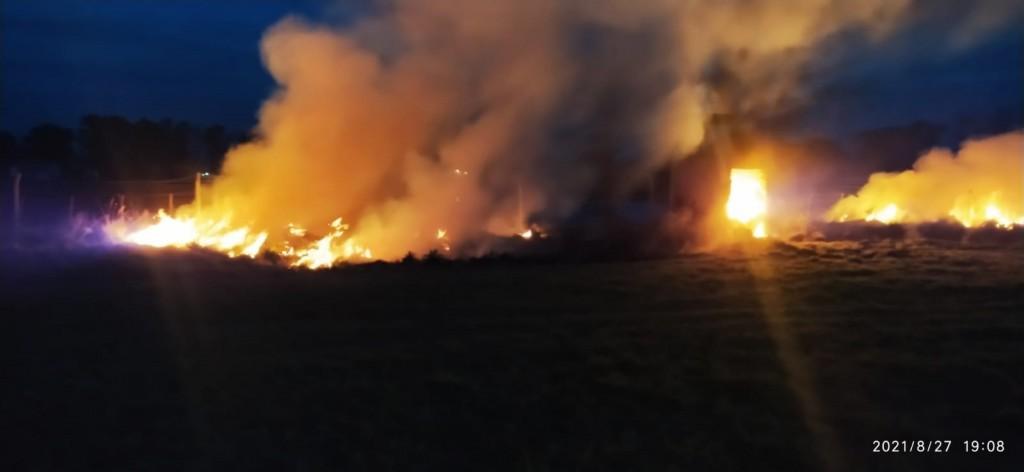 Bomberos extinguió un importante incendio forestal
