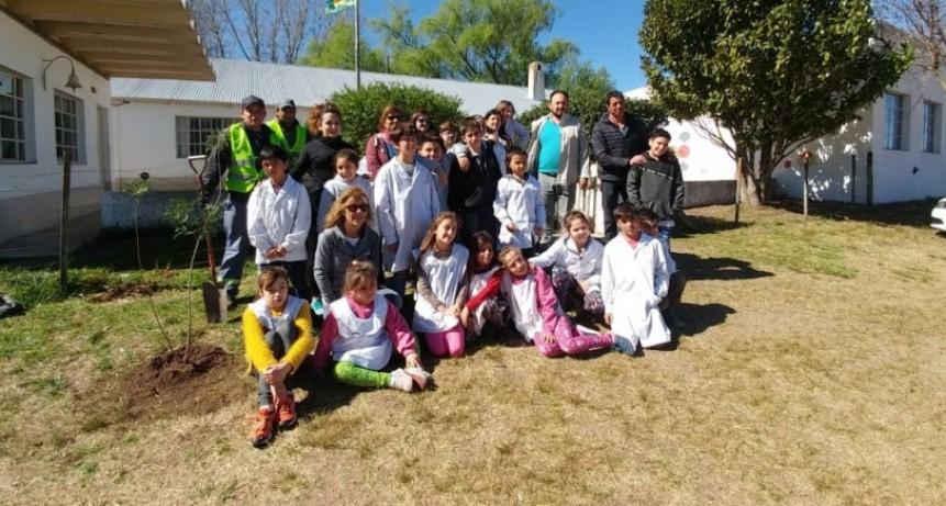 Alumnos de la escuela N.° 11 realizaron una forestación junto a la Municipalidad