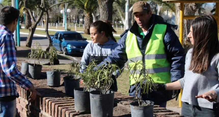 La Municipalidad realizó una forestación junto a alumnos de la Escuela Secundaria N.° 4