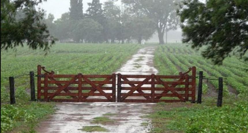 La lluvia en Bolívar llegó a 65 milímetros, en 25 de Mayo más de 100 milímetros