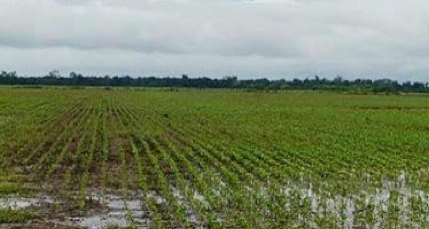 Lluvias en Bolívar y la zona