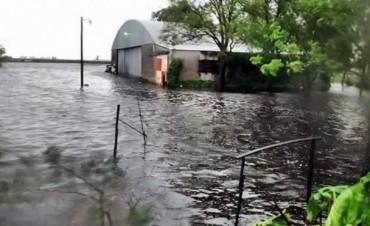 El gobierno bonaerense declara la emergencia agropecuaria por las inundaciones en General Villegas y Carlos Tejedor