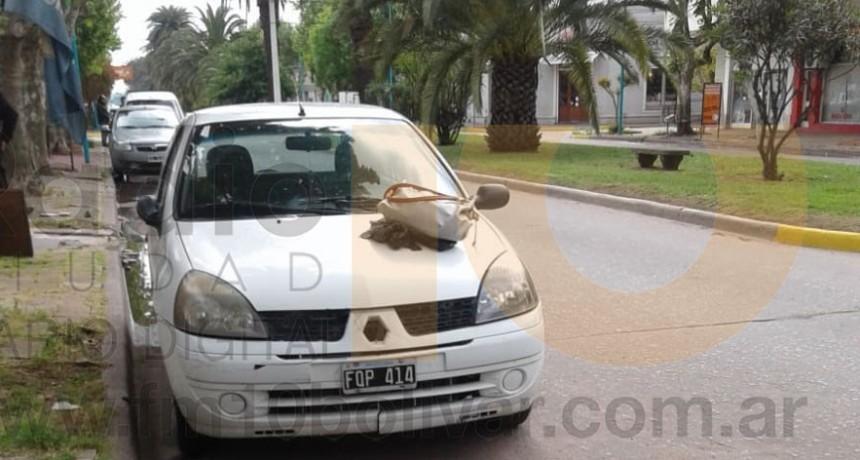 Accidente en Avenida Brown y calle Bernardo de Yrigoyen: Un peatón fue hospitalizado