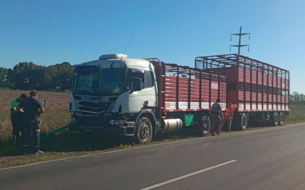 Dos camiones colisionaron en ruta 65