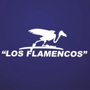 La agrupación Los Flamencos de Junín se hará cargo de cronometrar la Maratón Dino Hugo Tinelli