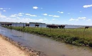 RENATRE Bs. As. Sur se reunió con productores afectados por las inclemencias climáticas