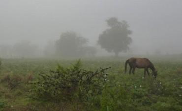 Nuevas lluvias superan los 1.745 milímetros en diez meses