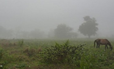 Lluvias en Bolívar y zona rural: Se dieron registros que van desde 5 hasta 20 milímetros