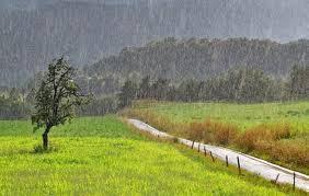 Registro de lluvias: Desde 10 hasta 50 mm en Bolívar y la zona
