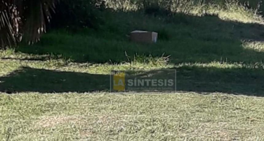 Novedades del horror en Saladillo: Hallaron restos de un cráneo humano