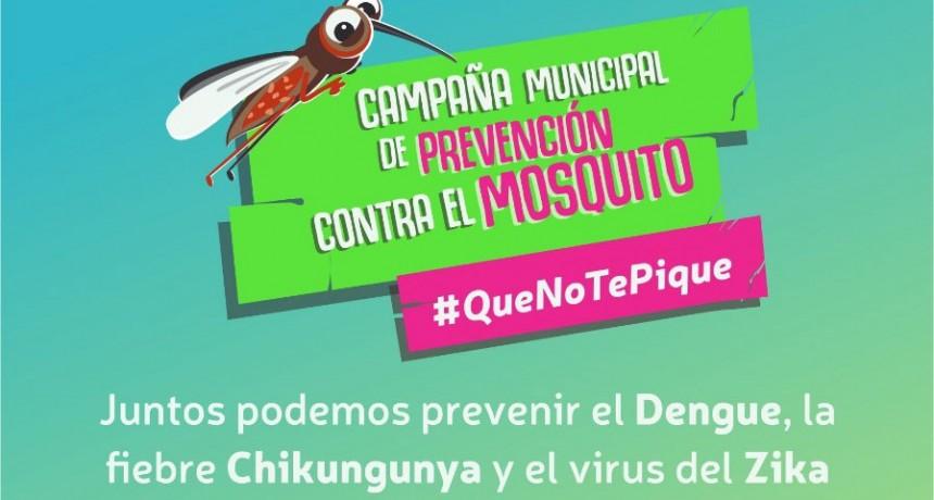 Sigue la campaña de pulverización contra mosquitos