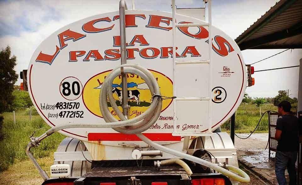 Tapalqué: Séptimo Varón ya empezó a producir quesos