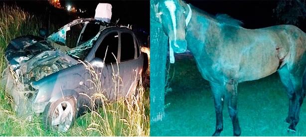 Un vehículo impactó contra un equino  y dos personas resultaron heridas