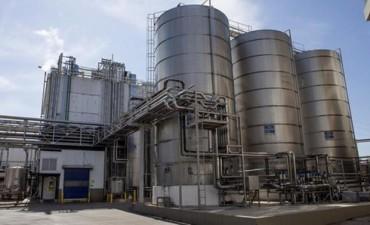 Fuerte baja de las exportaciones de leche en polvo