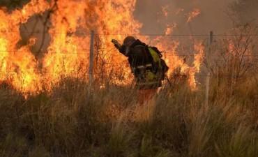 Preocupan los incendios reiterados en la Provincia