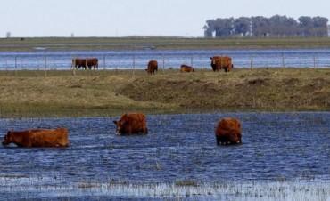 Federación Agraria Argentina evalúa el impacto del temporal