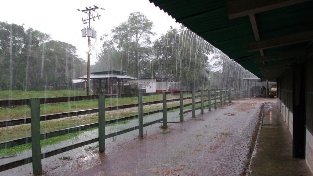 Registro de lluvias en Bolívar y la zona: Entre 2 y 25 mm