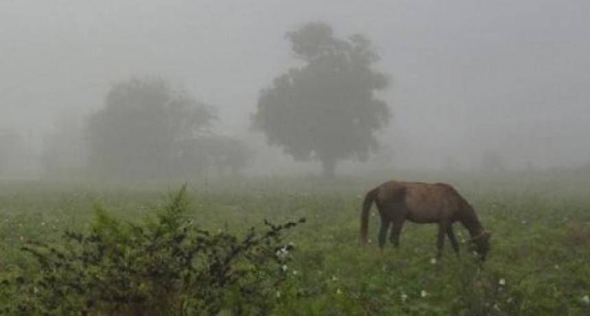 Registro de lluvias: Desde 7 hasta 32 mm registrados en Bolívar y la zona