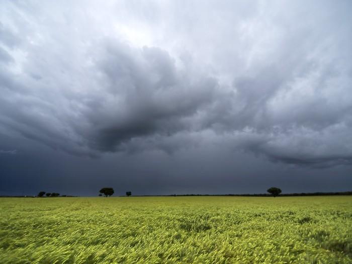 Lluvias en la zona: hubo registros que oscilaron entre los 10 y 30 milímetros